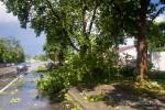 Ураган-8032