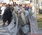 Karnaval2011_31