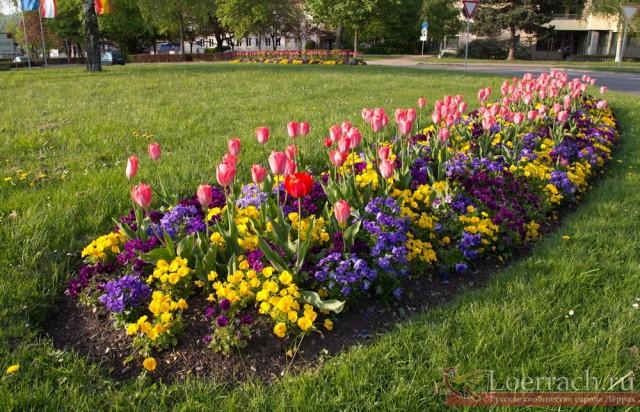 Лёррах весной